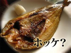 北浦産ウニは豊富な海藻を食べている
