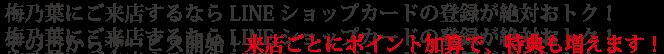 umekuupon_07-x