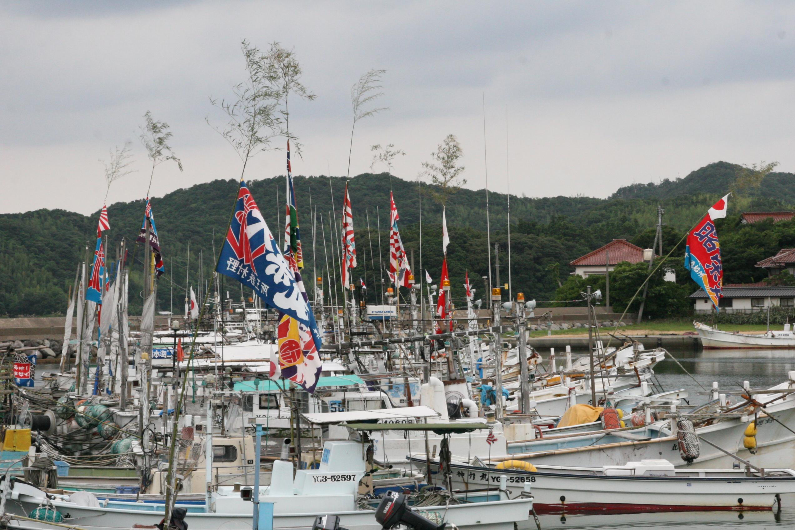 7月27-30日の祭によるイカ漁の...