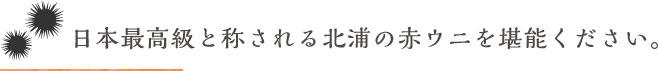 日本最高級と称される北浦の赤ウニを堪能ください。